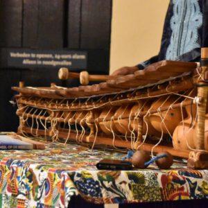 Kameel op de weg - Afrikaans muziekinstrument